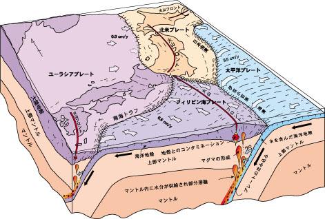 プレート 太平洋